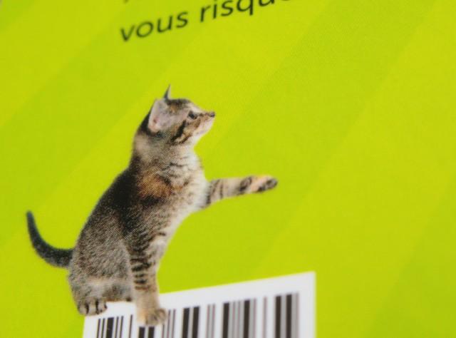 lelivre_qui_rend_fou-chat